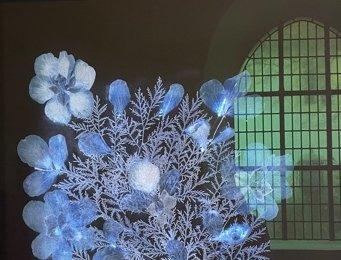 Kunst im Kreuzgang – Dor Guez FOREIGN FIELDS