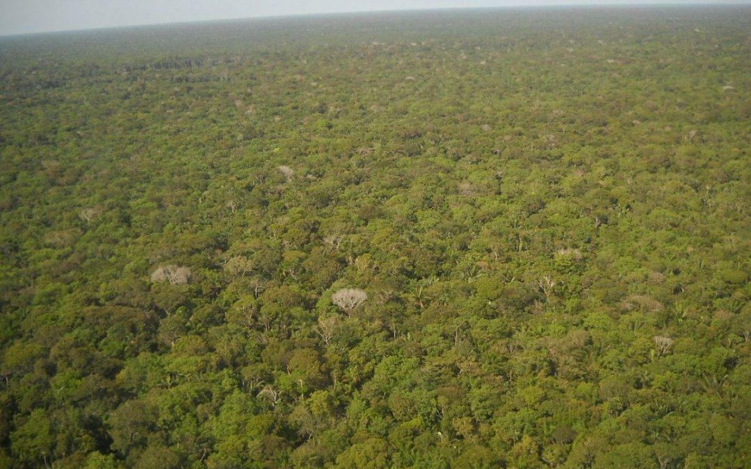 Amazonas-Synode. Ein Rückblick